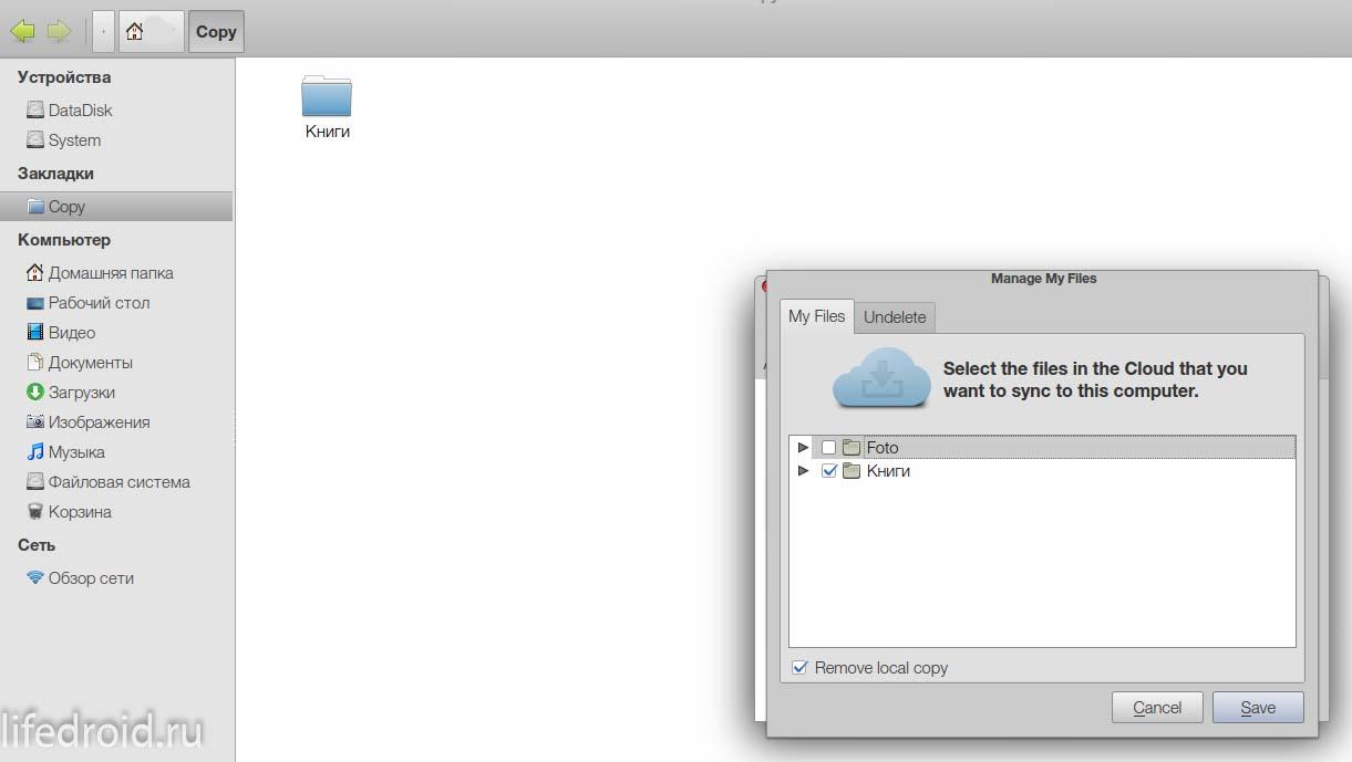 Клиент для Линукс. Выбор папки для синхронизации.